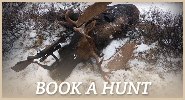 Book a Hunt with DB Outfitting Ltd.